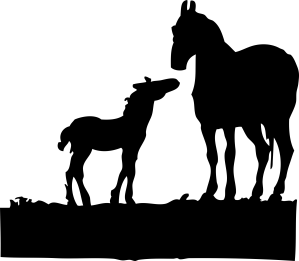 johnny-automatic-mare-and-foal