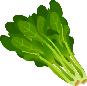 food-spinach-800px