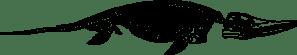 ichthyosaurusskeleton-800px
